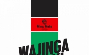 King Kaka - Wajinga Nyinyi